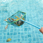 Spring Cleaning Backyard Pool
